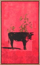 Une Vache de Monsieur Yoshizawa (25/355)