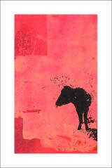 Une vache de Monsieur Yoshizawa (13/355)