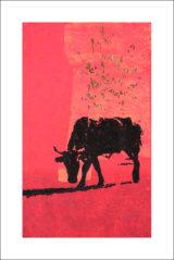 Une vache de Monsieur Yoshizawa (17/355)