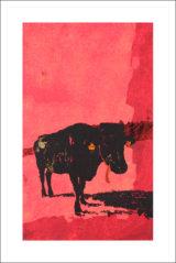 Une vache de Monsieur Yoshizawa (34/355)