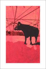 Une vache de Monsieur Yoshizawa (42/355)