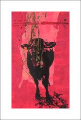 Une vache de Monsieur Yoshizawa (62/355)