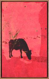 Une Vache de Monsieur Yoshizawa (39/355)